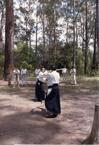 1986 Saito & Nemoto
